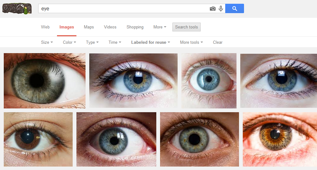 Google Image Search of Eye